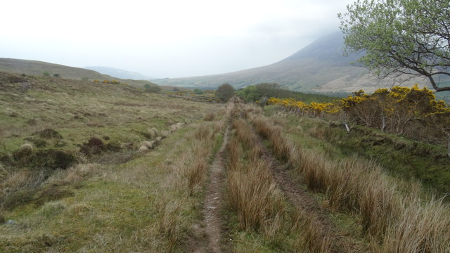 View NE along part of the Keenagh Loop Path, Co Mayo