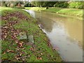 SO8844 : Steps beside Croome River by Philip Halling
