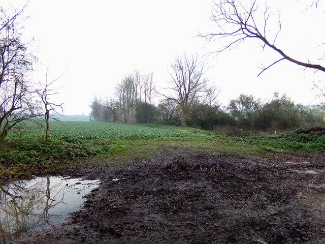 Farmland off Chickering Road