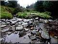 H4981 : Stream with small boulders, Gortin Glens Forest Park by Kenneth  Allen