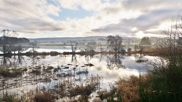 Margin of River Beauly