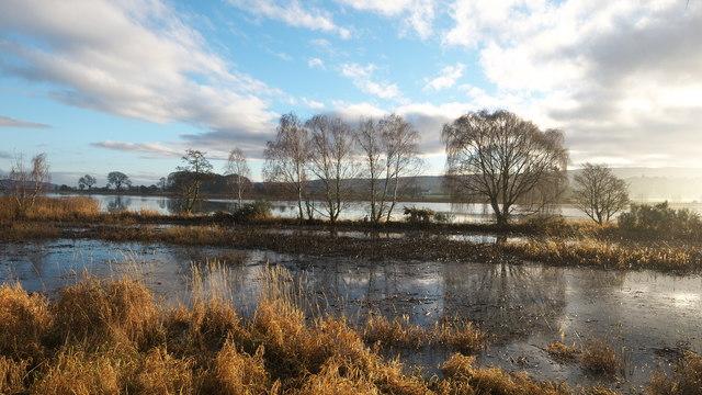 Shoreline of the River Beauly