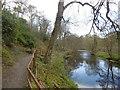 NS5326 : River Ayr, Daldorch by Richard Webb