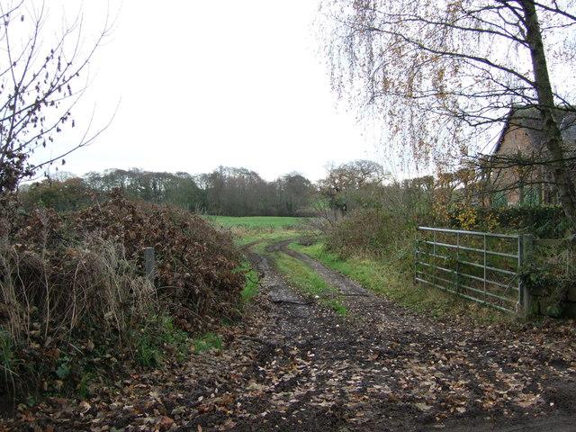 Farm track, Hillside Farm