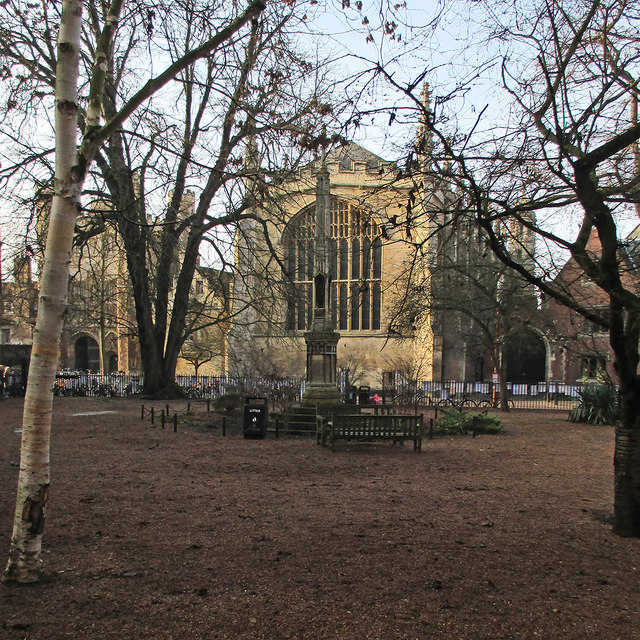 All Saints Garden in December