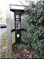 SP9101 : Former KX300 Telephone Kiosk, Hyde End by David Hillas