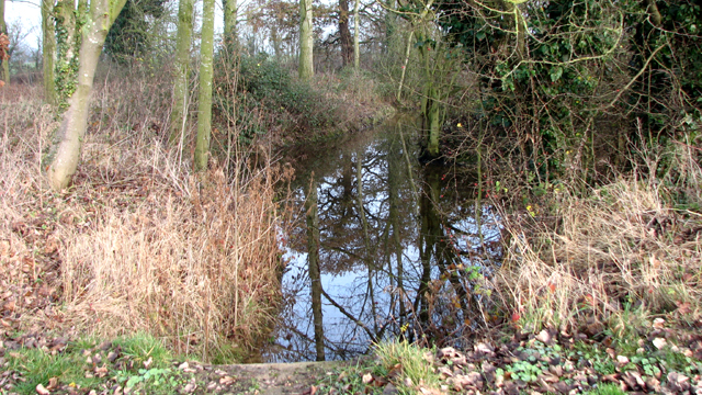 Ditch beside Denton Road
