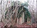 TM3191 : Ramshackle Nissen hut by Evelyn Simak