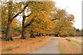 TQ5452 : Knole Park by Richard Croft