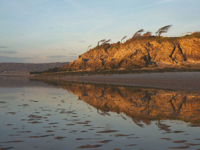 Reflections on the shore, Silverdale