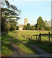 ST8383 : Macmillan Way at Luckington by Derek Harper