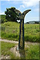 TR3242 : National Cycle Network Milepost by N Chadwick
