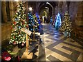 SO8454 : Christmas trees in Worcester Cathedral by Philip Halling