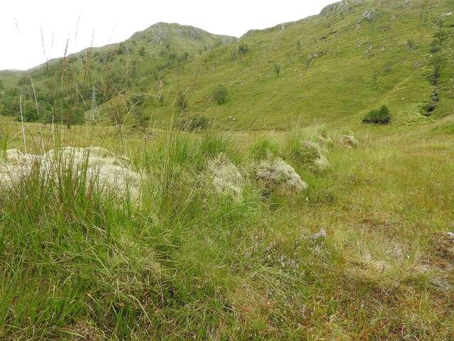 Turf Dyke. Gleann Dubh Lochain