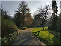SK5804 : Low winter sunlight in Castle Gardens, Leicester by Mat Fascione