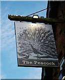 SP0575 : The Peacock (2) - sign, Icknield Street, Forhill, Worcs by P L Chadwick