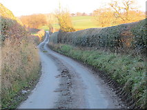 SJ3434 : Road near New Marton Triangulation Pillar by Peter Wood