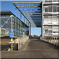 TL4258 : On the West Cambridge Site by John Sutton