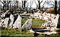 SH4986 : 1976 Din Lligwy Neolithic Stone Circle,  Anglesey, Wales by Hazel Greenfield