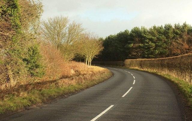 Road near Moorhouses