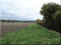 ST9964 : Field edge path by Michael Dibb