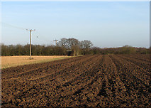 TL4568 : Cottenham: rich fen earth by John Sutton