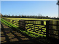 TL6862 : Hascombe Stud by Moulton Road by Hugh Venables