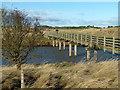 NU2227 : Long Nanny Bridge by Alan Murray-Rust