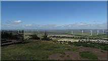 SJ4977 : View across R Mersey from Frodsham Hill by Colin Park