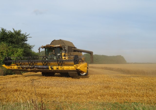 Harvest time for Danny Field by Sandy B