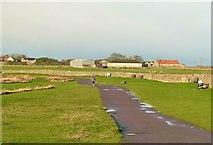 NU1341 : Holy Island Promenade by Alan Murray-Rust