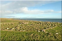 NU1341 : Stone maze, near Lindisfarne Castle by Alan Murray-Rust