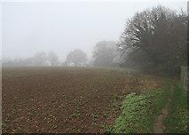 TM2844 : Waldringfield: footpath, field and fog by John Sutton