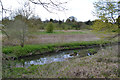 SP3576 : River Sowe and its floodplain between Willenhall and Whitley, southeast Coventry by Robin Stott