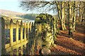 SE0656 : Gate and wall above the Wharfe by Derek Harper