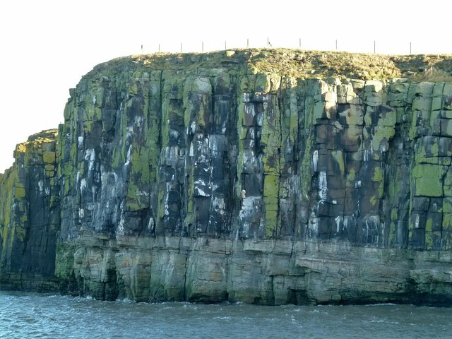 Gull Crag, Dunstanburgh