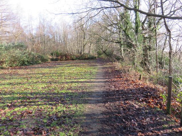 Path on Tilburstow Hill