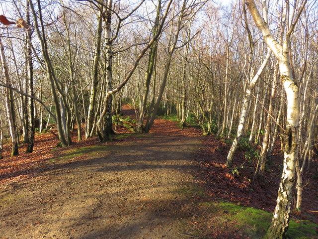 Path back to Car Park, Tilburstow Hill