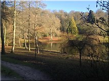 ST7734 : The Garden Lake, Stourhead by Kate Jewell