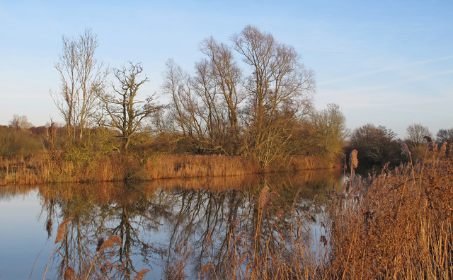 Looking to Gillingham over the Waveney from Beccles Marshes