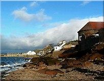 NS2055 : The Pine House - Fairlie Sands by Raibeart MacAoidh