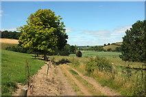 SX8158 : Dart Valley Trail near Sharpham Barton by Derek Harper