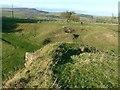 NZ0897 : Limekiln, Low Hesleyhurst by Alan Murray-Rust