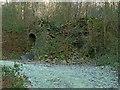 NZ0548 : Lime kiln at Lead Mill, Muggleswick – 1 by Alan Murray-Rust