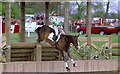 ST8083 : Badminton Horse Trials, Gloucestershire 1996 by Ray Bird