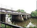 SX8061 : Railway bridge over the Dart at Totnes by Stephen Craven