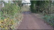 TQ0481 : Ford Lane, Iver. (3) by Rob Emms