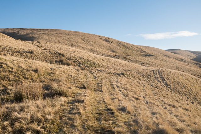 Western slopes of Bald Hill