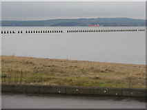 NT1977 : The Firth of Forth from Cramond by M J Richardson