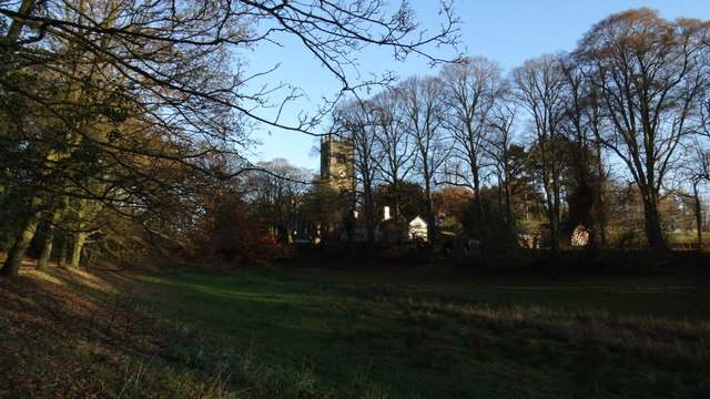 View through trees to Gawsworth Church from path to W